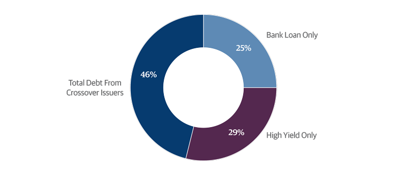 Most Issuers' Debt Portfolios Contain Both Loans and Bonds